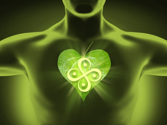 human-body-heart_GREEN